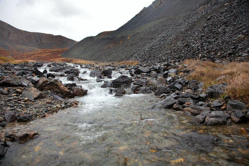Duidelijk water in de ruwe bergrivier royalty-vrije stock fotografie