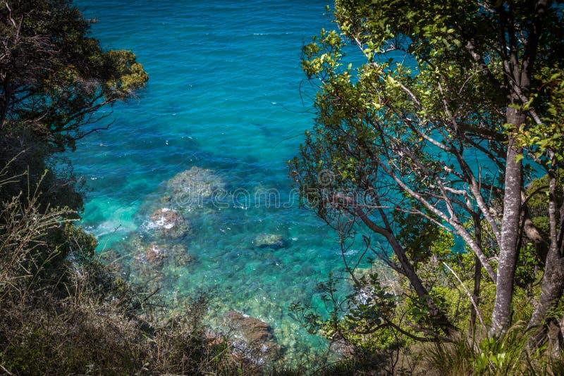 Duidelijke blauwe wateren van oceaan en weelderig groen in Abel Tasman National Park royalty-vrije stock fotografie
