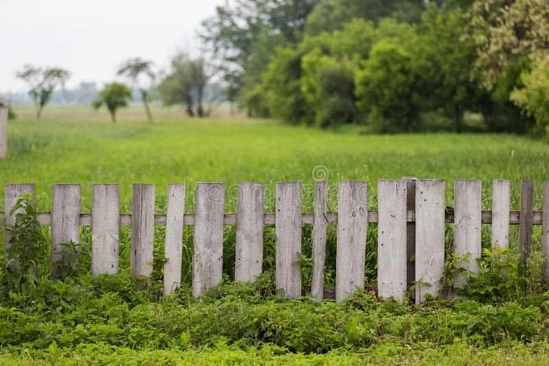 Duidelijke houten rustieke omheining en groene aard stock foto