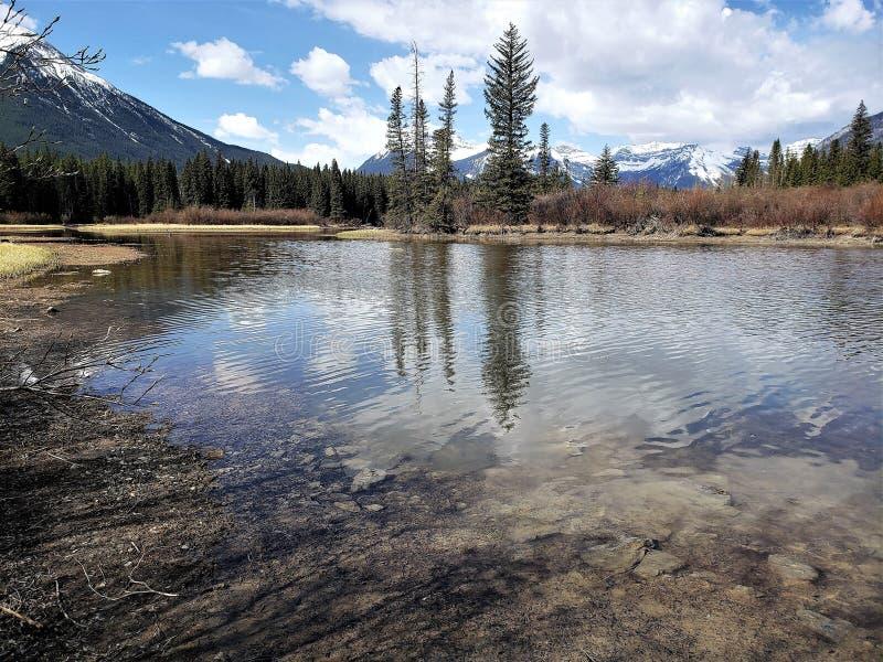Duidelijke water en berg in Banff Alberta royalty-vrije stock foto's