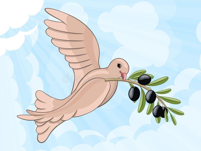 Duif met olijftak vector illustratie