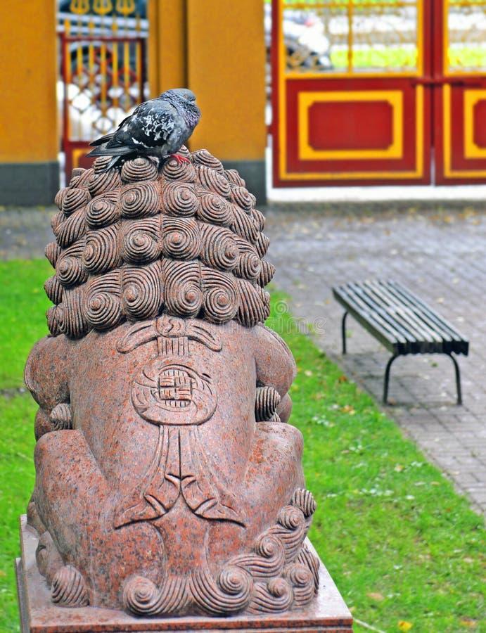 Duif op het beeldhouwwerkhoofd van een leeuw in de werf van Buddhi