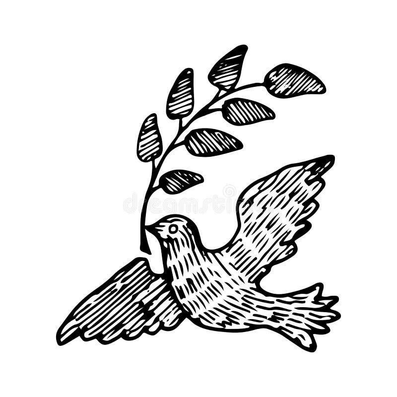 Duif van Vrede met een Takje Vectorillustratie stock illustratie