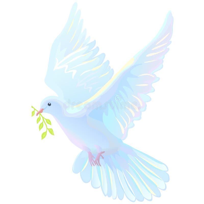 Duif, witte duif met groene twijg royalty-vrije illustratie