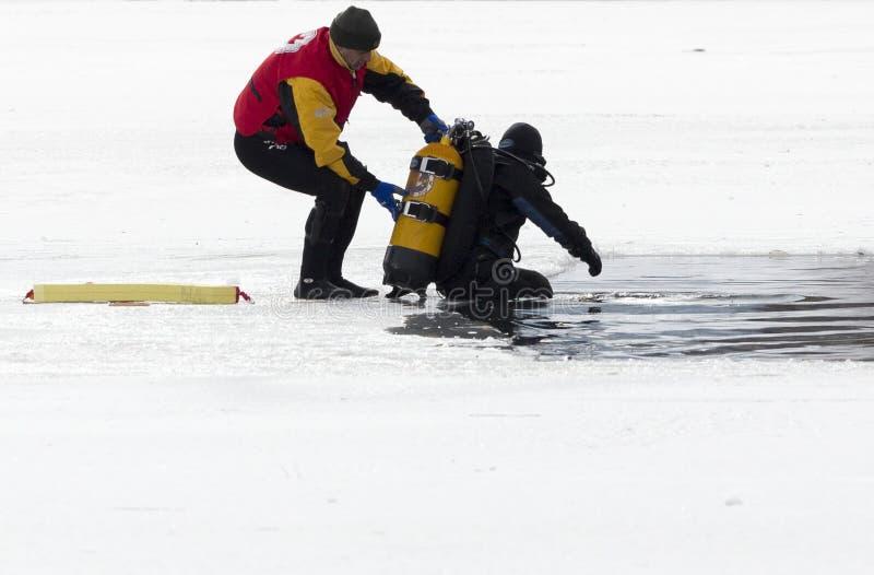 Duiker ijskoud water stock foto
