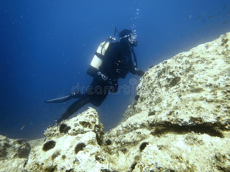 Duiker Onderwater onderwater De scuba-uitrusting duikt royalty-vrije stock afbeeldingen
