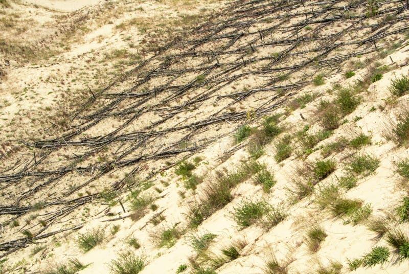 Duin die houtconstructie over het zand beschermen bij natuurreservaat van Curonian-Spit stock afbeelding