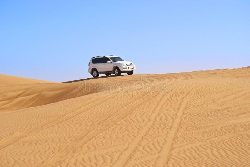 Duin het berijden in Arabische woestijn stock foto's