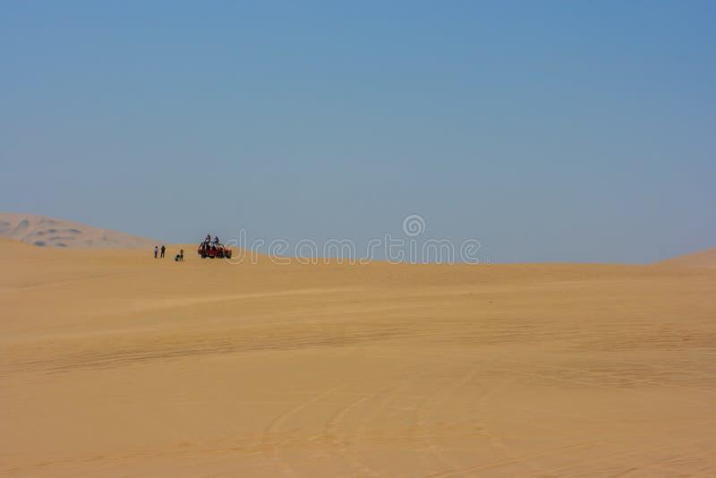 Duin met fouten kruisend de woestijn in Huacachina, Ica, Peru stock afbeelding