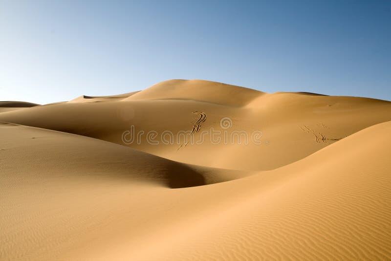 Duin van de Sahara stock foto's