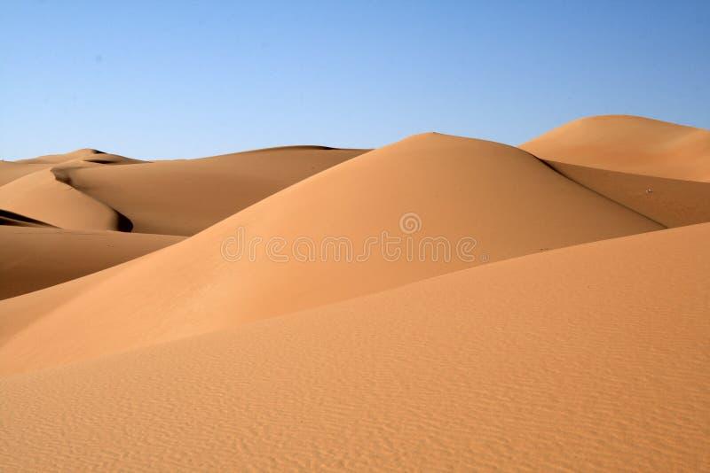 Duin van de woestijn van de Sahara stock afbeeldingen