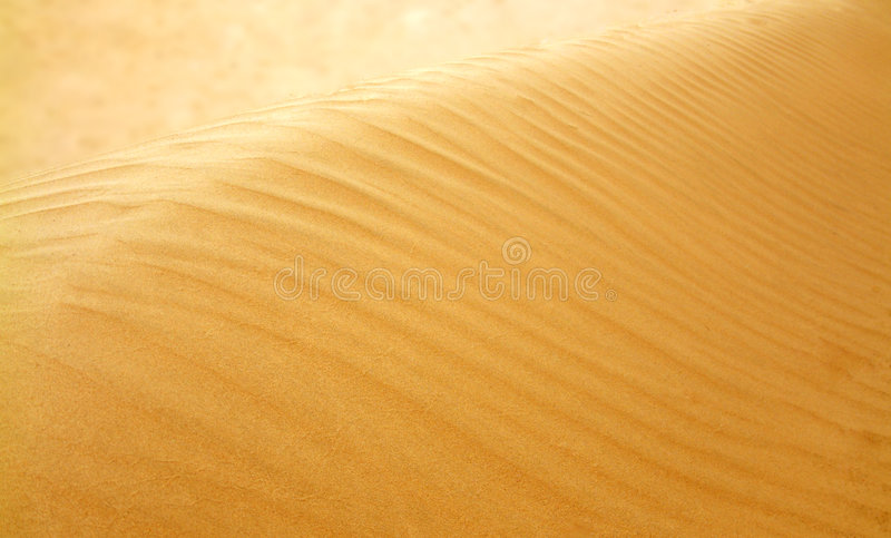 Duinen stock fotografie