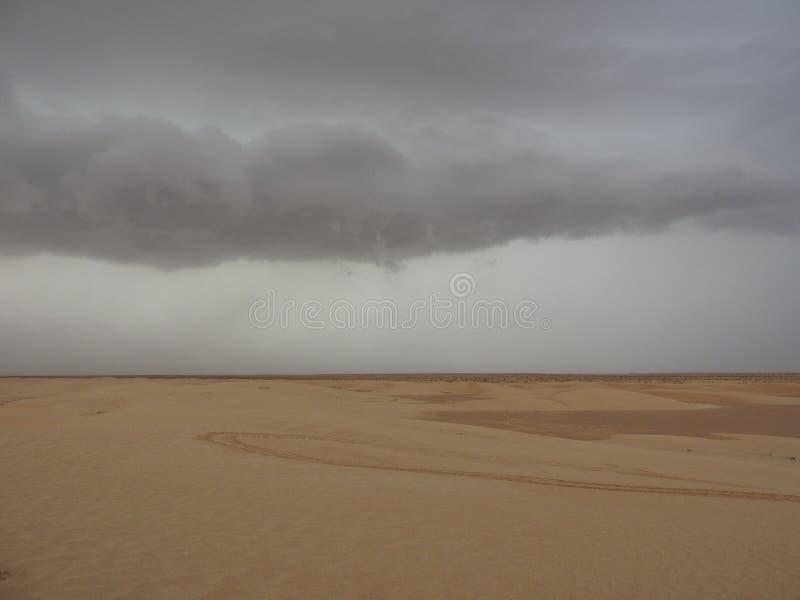 Duinen in de Sahara, merzouga Marokko Gouden Woestijnduinen Heuvels van de Sahara Het gelijk maken in de woestijn Lanscape Marokk stock foto's