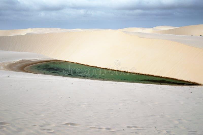 Duinen en meer - het nationale park van Lencois Maranheses stock foto's
