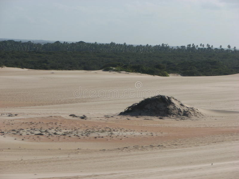 Duinen en woestijn in Geboorte, RN, Brazilië royalty-vrije stock fotografie