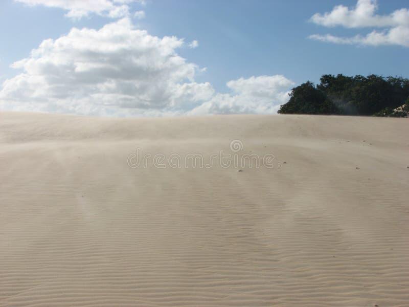 Duinen en woestijn in Geboorte, RN, Brazilië stock afbeeldingen