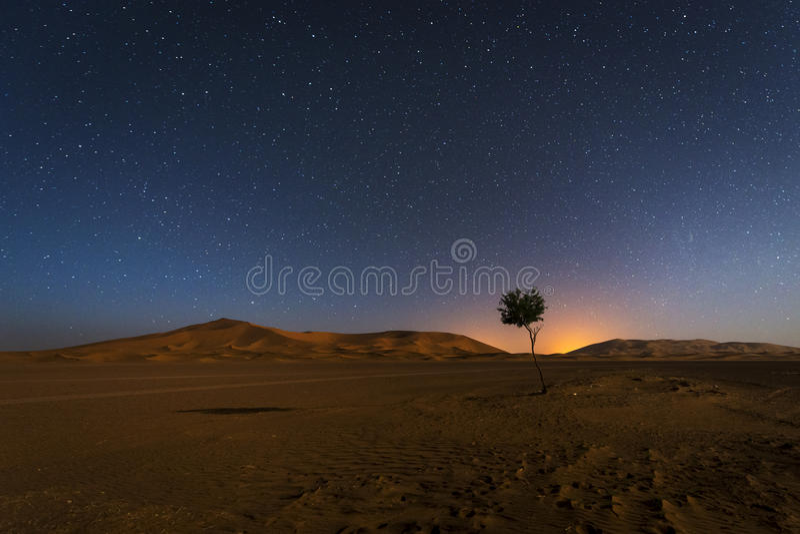 Duinen in Erg Chebbi in Marokko bij nacht met het hemelhoogtepunt van sterren royalty-vrije stock foto's