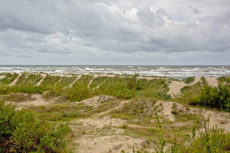 Duinen langs de Oostzee op een bewolkte dag royalty-vrije stock foto