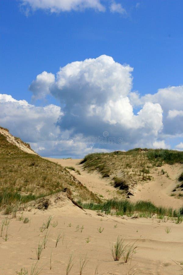 Duinen in Litouwen royalty-vrije stock fotografie