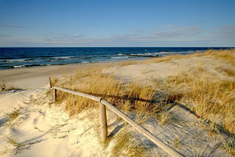 Duinen op de kust van de Oostzee op een mooie de lentedag stock foto