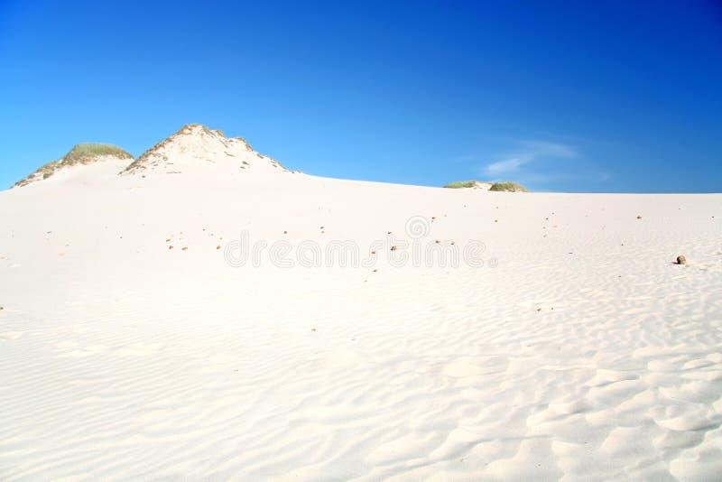 Duinen op een woestijn. stock fotografie