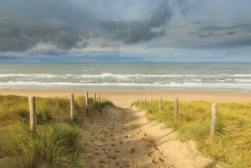 Duinen, strand en overzees royalty-vrije stock foto