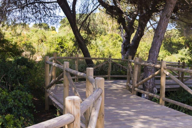 Duinen van artola natuurlijke die reserve in Cabopino Marbella Costa del Sol Malaga Spain wordt gevestigd royalty-vrije stock afbeelding