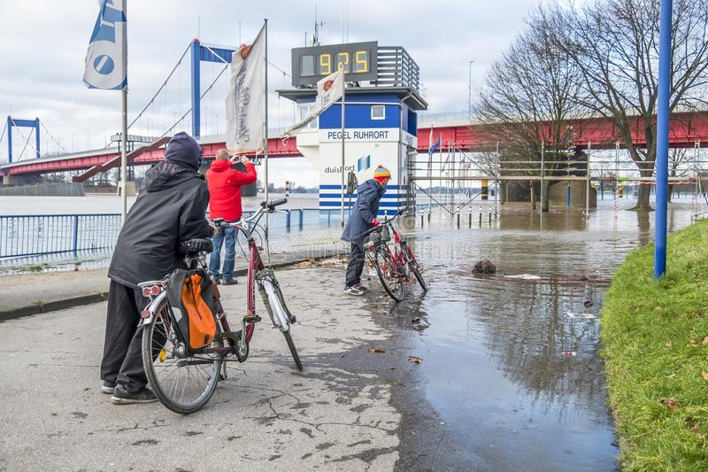 Duisburg Germany - January 08 2017 : Bike drivers surprised by the river Rhine flooding the promenade. In Ruhrort royalty free stock photo