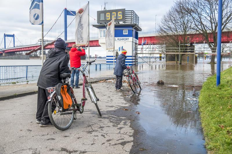 Duisburg Germany - January 08 2017 : Bike drivers surprised by the river Rhine flooding the promenade. In Ruhrort stock images