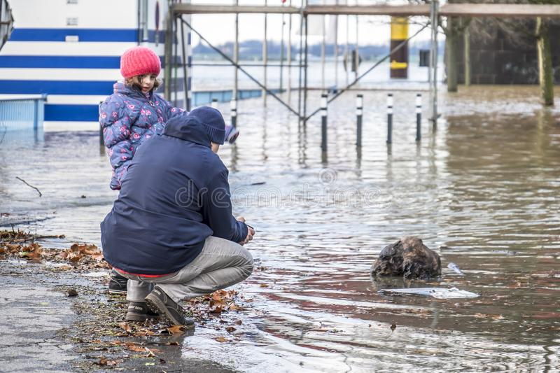 Duisburg , Germany - January 08 2017 : Man and daughter observing the the river Rhine flooding the promenade in Ruhrort. DUISBURG , GERMANY - JANUARY 08 2017 stock image