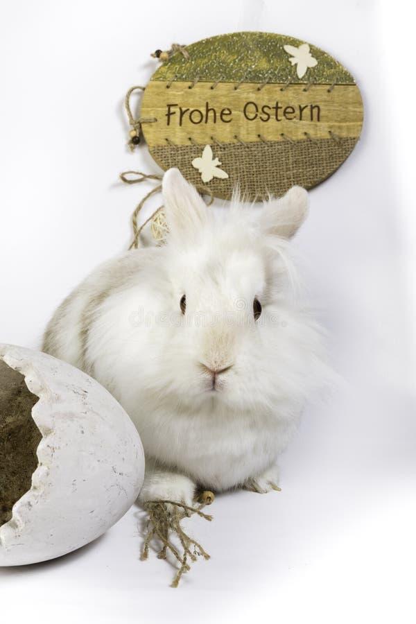 Duitse Gelukkige Pasen royalty-vrije stock afbeelding