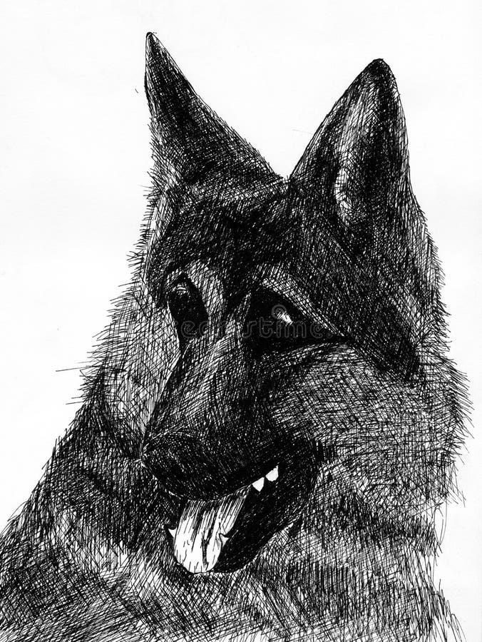 Duitse herder stock illustratie