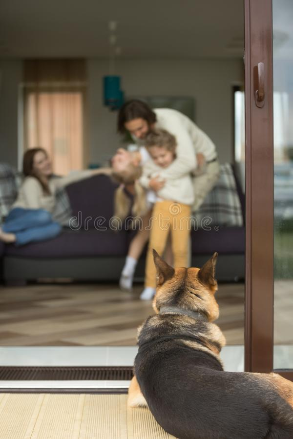 Duitse herder het kijken binnen huis met familie, brengt verticaal groot stock afbeeldingen