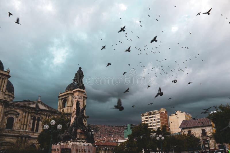 Duiven die boven Plein Murillo in Bolivië vliegen royalty-vrije stock afbeelding