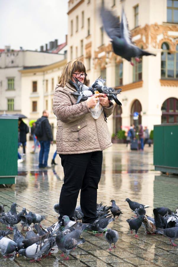 Duiven en mensen in Krakau stock fotografie