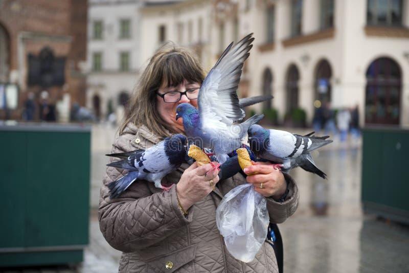 Duiven en mensen in Krakau royalty-vrije stock foto