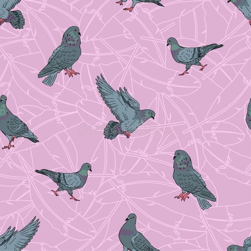 Duiven naadloos patroon, de duifvogel van de straat stedelijke stad, de achtergrond van de beeldverhaalvogel, vector editable ill stock illustratie