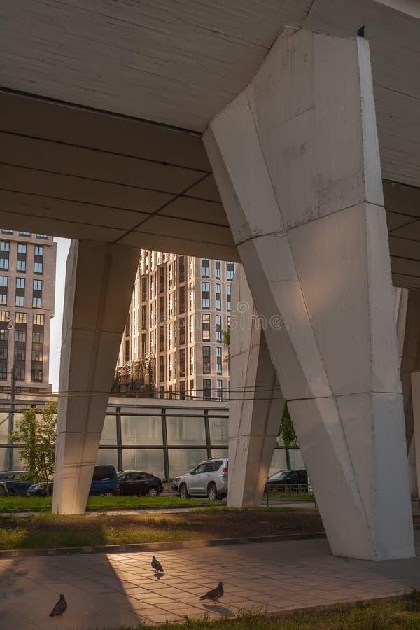 Duivengang onder de concrete pijlers van het huis Moskou, Rusland stock afbeelding