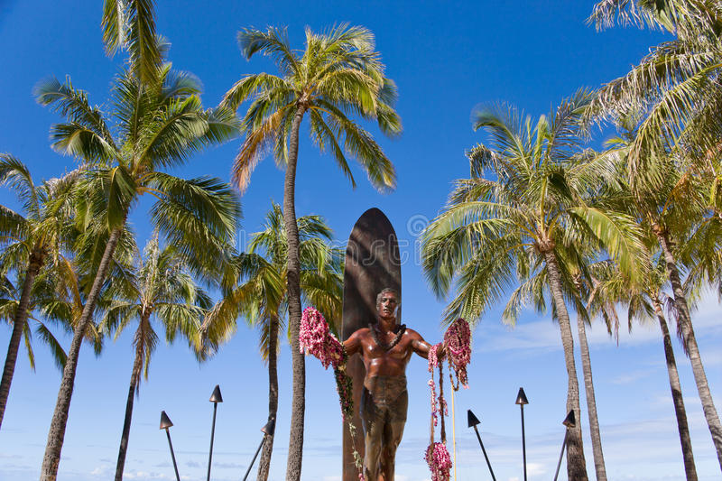 Download Duke stock image. Image of surf, palm, kahanamoku, summer - 15670115