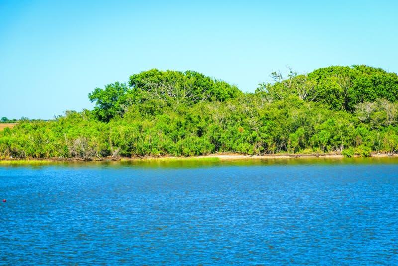 Dulac, Louisiana-Bayou lizenzfreies stockfoto
