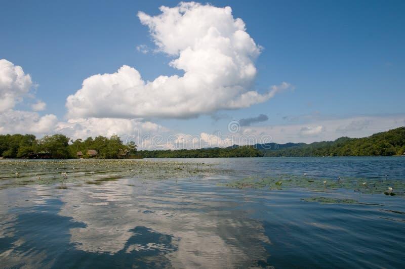 dulce Guatemala rzeka zdjęcia royalty free