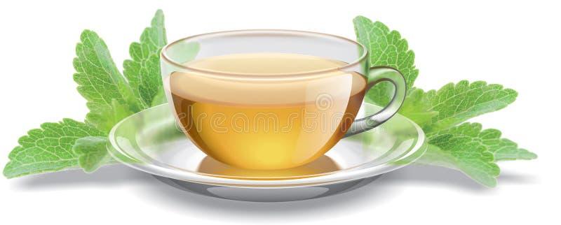 Taza de té con las hojas del stevia ilustración del vector