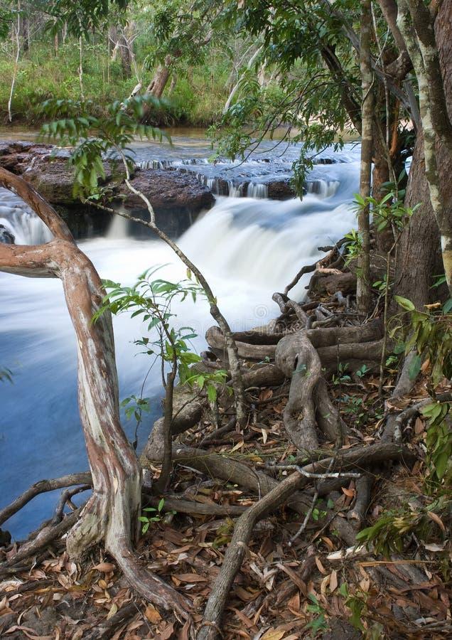 Dulhunty rzeka obrazy royalty free