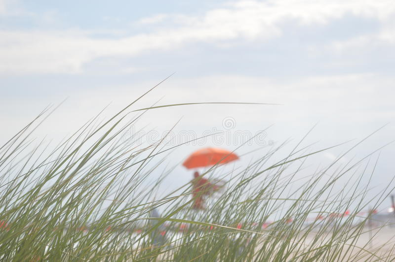 The dull view of the beach and lifeguard through the grass. With the cloudy sky at the background stock photography