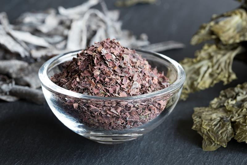 Dulse flakes with sea lettuce and other seaweed royalty free stock photography
