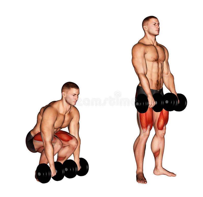 _ Dumbbell Deadlift royalty ilustracja