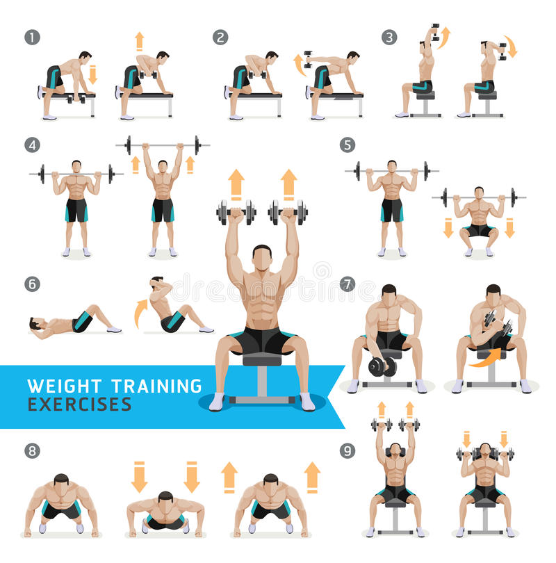 Strength Training Workouts: Dumbbell Exercises And Workouts Weight Training. Stock