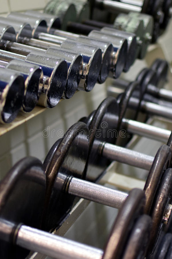 dumbbells photo stock