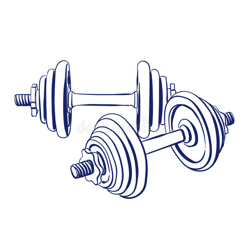 Dumbbells doodle drawing. Dumbbells sport fitness vector sketch illustration isolated over white background vector illustration