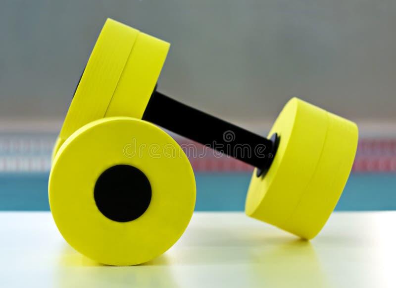 Dumbbells für Aqua Aerobics lizenzfreie stockfotografie